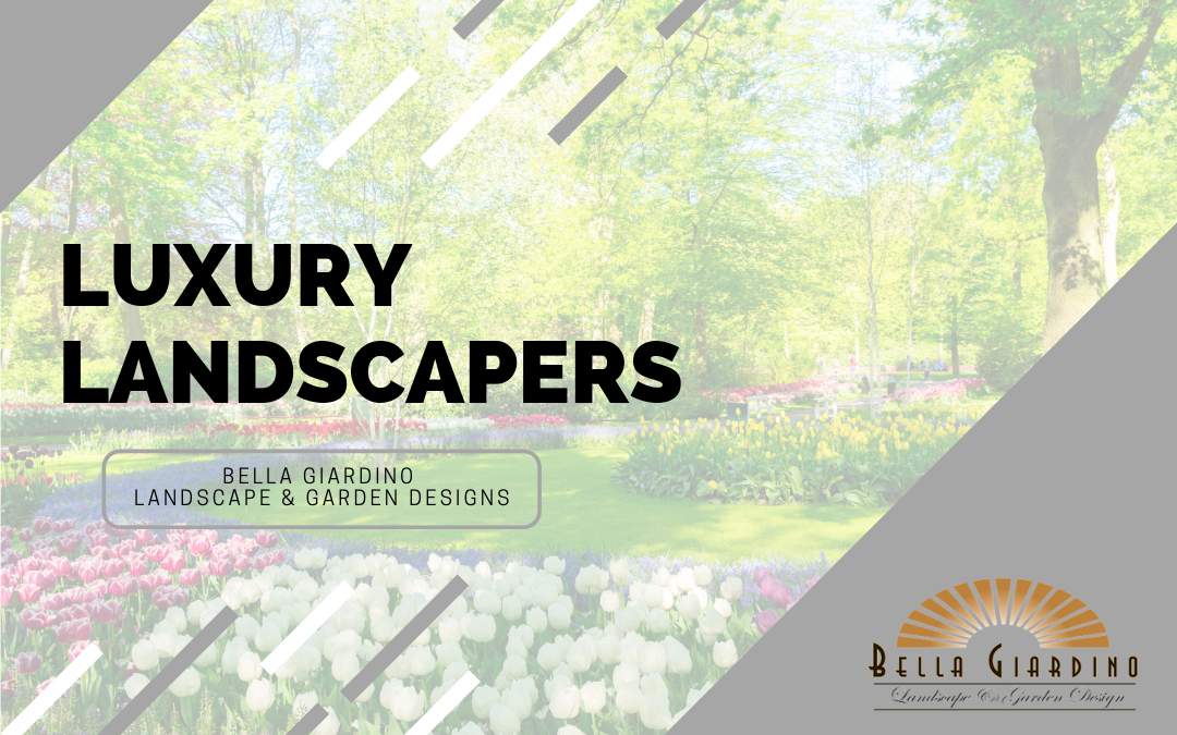 Why You Should Let Bella Be Your Luxury Landscaper